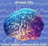 th (6) alfa