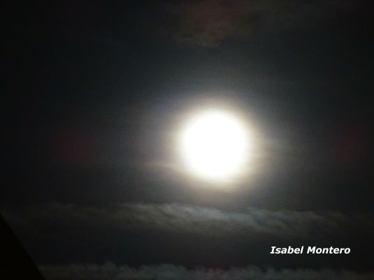 DSC00261 firmada luna