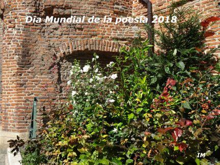 DSC02357 dia mundial de la poesia 2018 ROTULO